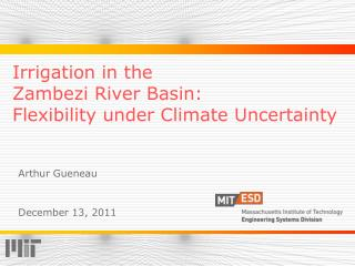 Irrigation in the  Zambezi River Basin: Flexibility under Climate Uncertainty