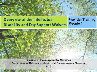 Overview of the Intellectual Disability and Day Support Waivers