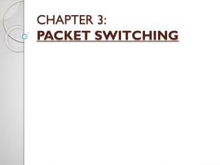 CHAPTER 3: PACKET SWITCHING