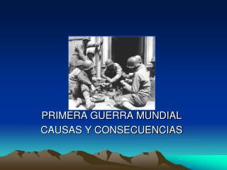 PRIMERA GUERRA MUNDIAL CAUSAS Y CONSECUENCIAS