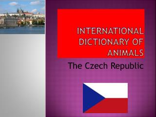 INTERNATIONAL DICTIONARY OF ANIMALS