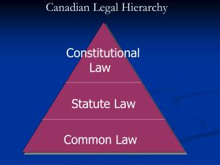 Statute Law Common Law