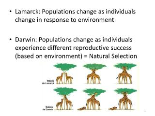 Lamarck: Populations change as individuals change in response to environment