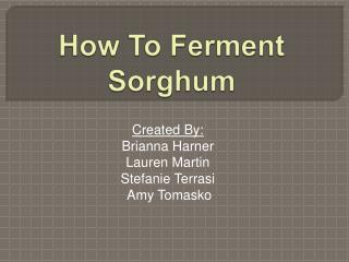 How To Ferment Sorghum