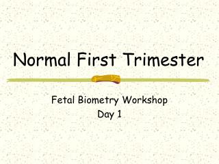 Normal First Trimester