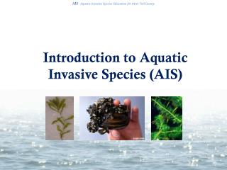 Introduction to Aquatic Invasive Species (AIS)
