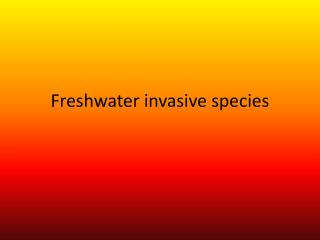Freshwater invasive species