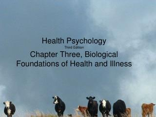 Health Psychology Third Edition Chapter Three, Biological Foundations of Health and Illness