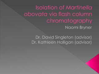 Isolation of  Martinella obovata  via flash column chromatography