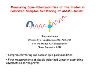 Measuring Spin- Polarizabilities  of the Proton in Polarized Compton Scattering at MAMI-Mainz