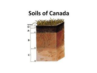 Soils of Canada
