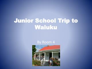 Junior School Trip to  Waiuku