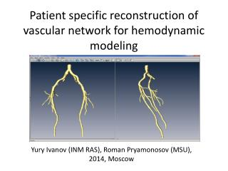Patient specific reconstruction of vascular network for  hemodynamic  modeling