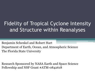Fidelity of Tropical Cyclone Intensity and Structure within Reanalyses