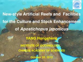 YANG  Hongsheng INSTITUTE OF OCEANOLOGY , CHINESE ACADEMY OF SCIENCES October 20 ,  201 2