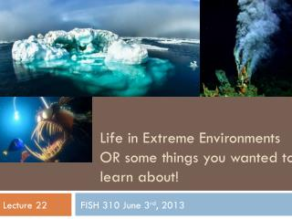 Life in Extreme Environments OR some things you wanted to learn about!
