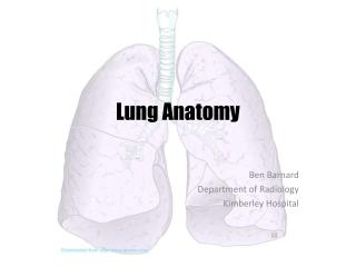 Lung Anatomy