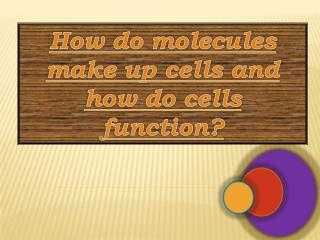 How do molecules  make up cells and  how do cells  function?