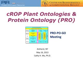cROP  Plant  Ontologies  & Protein Ontology (PRO)