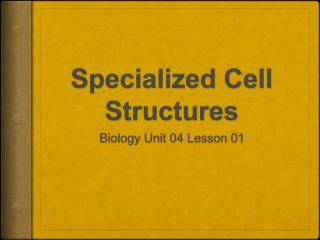 Specialized Cell Structures