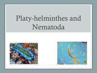 Platy-helminthes and Nematoda