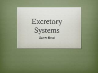 Excretory Systems