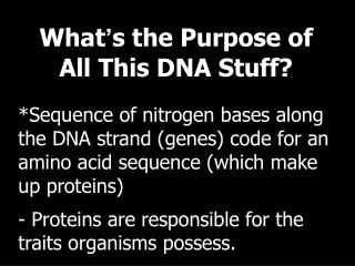 What ' s the Purpose of All This DNA Stuff?