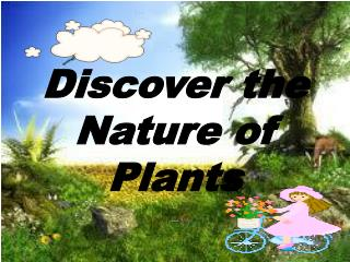 Discover the Nature of Plants