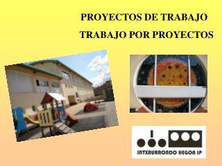 PROYECTOS DE TRABAJO    TRABAJO POR PROYECTOS