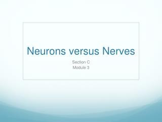 Neurons versus Nerves