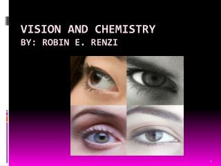Vision and Chemistry By: Robin E. Renzi