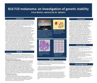 B16 F10 melanoma: an investigation of genetic stability Erica Martin, advised by Dr. Spilatro