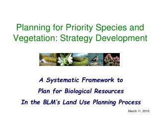 Planning for Priority Species and Vegetation: Strategy Development