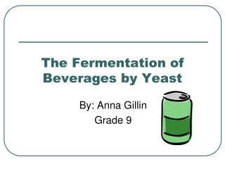 The Fermentation of Beverages by Yeast