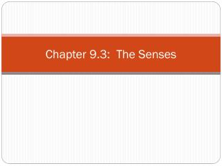 Chapter 9.3:  The Senses