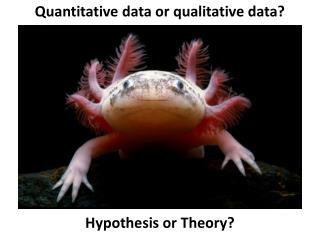 Quantitative data or qualitative data? Hypothesis or Theory?