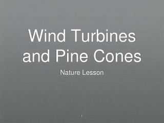 Wind Turbines and Pine Cones