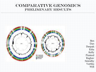 Comparative Genomics Preliminary Results