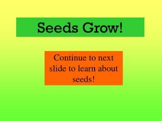 Seeds Grow!