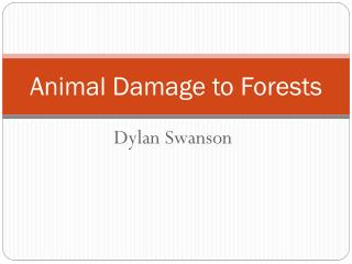 Animal Damage to Forests