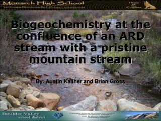 Biogeochemistry at the confluence of an ARD stream with a pristine mountain stream
