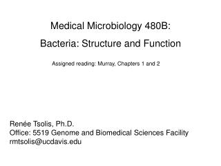 Medical Microbiology 480B:  Bacteria: Structure and Function