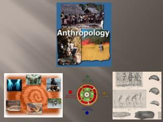 What is Anthropology?
