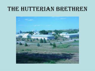 The Hutterian Brethren