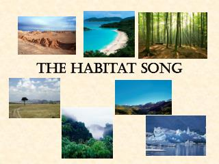The Habitat Song
