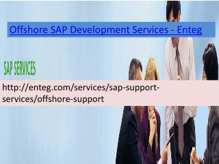 Enteg Offshore SAP Development Services