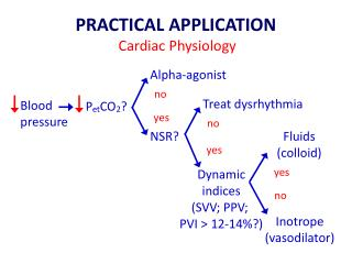PRACTICAL APPLICATION Cardiac Physiology