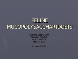 FELINE MUCOPOLYSACCHARIDOSIS
