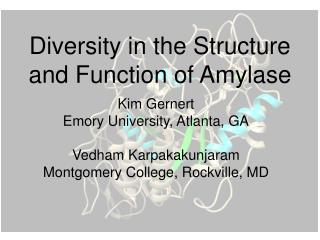 Diversity in the Structure and Function of Amylase