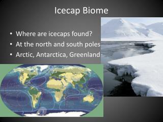Icecap Biome